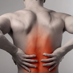 Back Pain MN